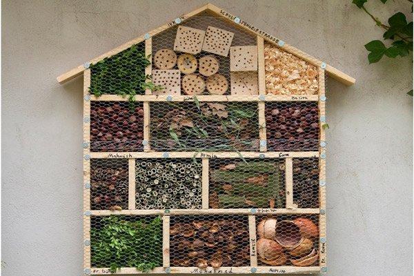 Projekt Insektenhotel
